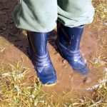 Drain Field Repair Should be Done Before Storm Season